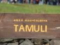 tamuli eclisse 20-3-2015 197.JPG